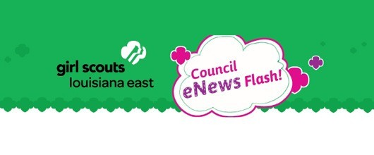 Council-Enews